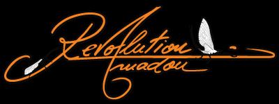 Revolution Amadou